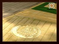 Maya Crop Circle 2009