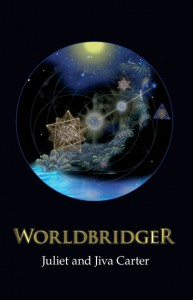 Worldbridger book